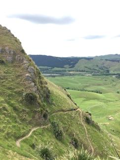 Te Mata trekking